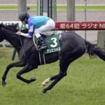 [ラジオNIKKEI賞2019]予想オッズ・出走予定馬とデータ予想!斤量53キロに注目!