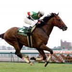 [中京記念2019]予想オッズ・出走予定馬とデータ予想!穴馬をしっかり見つけて万馬券をゲットしましょう!
