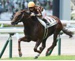 【北九州記念 2019】血統最終予想、夏のスプリント王を目指して本命はあの快速牝馬!!