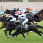 [京成杯オータムハンデ2019]予想オッズ・出走予定馬とデータ予想!4週連続的中へ!あまり買いたくないけど、クリノガウディーがデータ的には最上位。