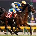 【アルゼンチン共和国杯 2019】血統予想・出走予定馬、有馬記念への伏兵馬はいるのか?