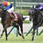 [菊花賞2019]予想オッズ・出走予定馬とデータ予想!関東馬は厳しいがホウオウサーベルはそれを凌駕するプラスがある。