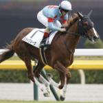 [京成杯2020]予想オッズ・出走予定馬とデータ予想!クラシック候補が登場するか!?