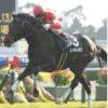 【日経新春杯 2020】血統予想展望・出走予定馬/予想オッズ、混戦ハンデ重賞、飛躍する馬は?