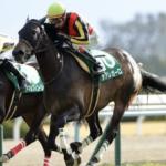 [京都牝馬ステークス2020]データ予想!出走予定馬と予想オッズ!サウンドキアラかメイショウショウブか!?