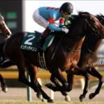 [東京新聞杯2020]データ予想!最終版!穴狙い!1点勝負!G1馬を甘く見てはいけません!