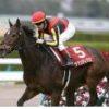 【高松宮記念 2020】血統展望・出走馬確定!血統から狙うべき馬はこの馬!!