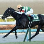 [中山牝馬ステークス2020]データ予想!出走予定馬から好走馬をあぶり出します!