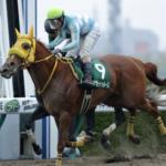 [アンタレスステークス2020]予想オッズ・出走予定馬とデータ予想!6頭買えば当たる。